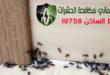 اكبر شركة مكافحة حشرات بالقاهرة