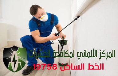 اكبر شركات مكافحة الحشرات بالقاهرة